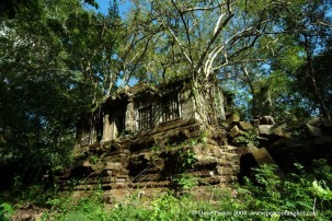 Peace of Angkor photo adventure tours siem reap cambodia beng mealea jungle temple tour